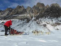 Dog sledding|Yukon|Boreal Kennels