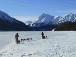 Adventures|Yukon|Boreal Kennels