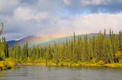 Vacances Yukon Borealkennels