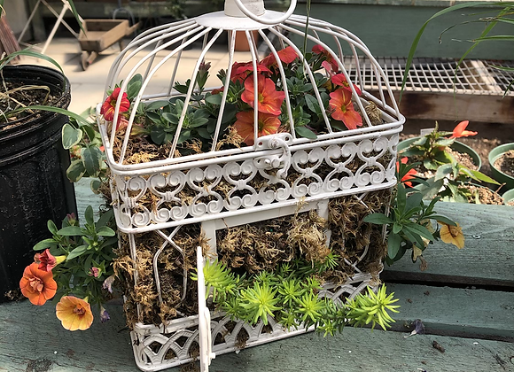 Small Rectangular Birdcage Pl0025