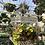 Thumbnail: Large Rectangular Birdcage Pl0021