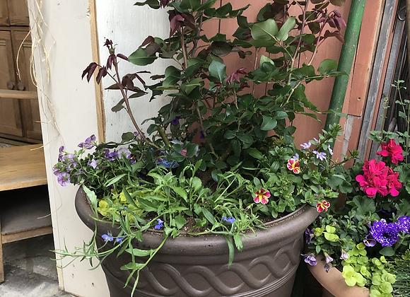 Rose Pot Pl0148
