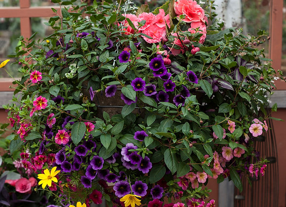 """Recipe #S3, 16"""" Shade Wire Hanging Basket"""