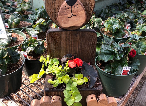 Bear Planter PL0130