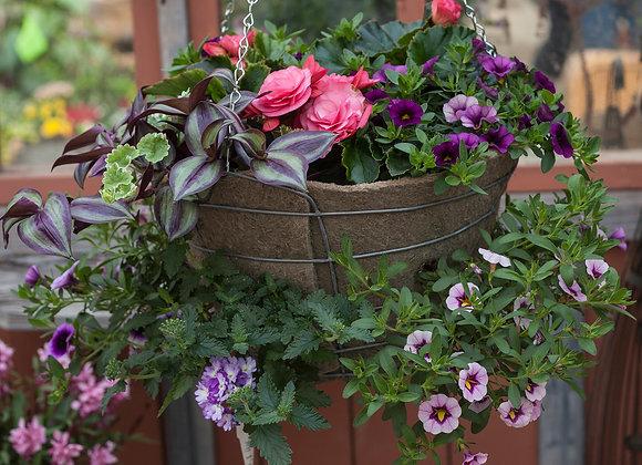 """#2 Dusty Rose, 14"""" Sun Wire Basket"""