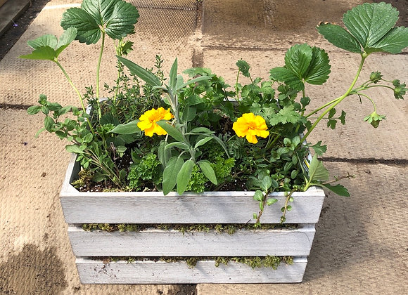 Large Wooden Crate Herb Planter Pl0142