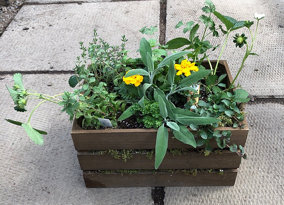 Large Wooden Crate Herb Planter Pl0144