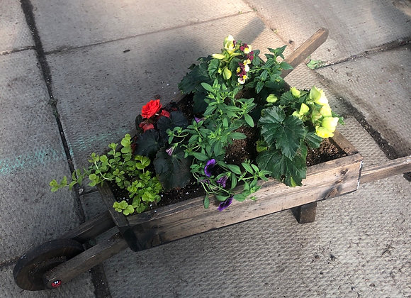 Wheelbarrow Planter Pl0129