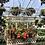 Thumbnail: Large Rectangular Birdcage Pl0024