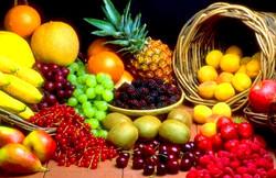 Bearing Much Fruit / 2-7-16