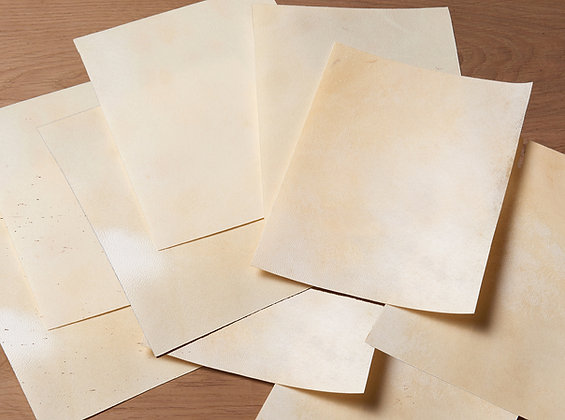 """10 sheets of 8x12"""" real goatskin parchment - 10 pieces of A4 size parchment"""
