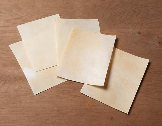 Antique goatskin parchment - Vellum - Real parchment