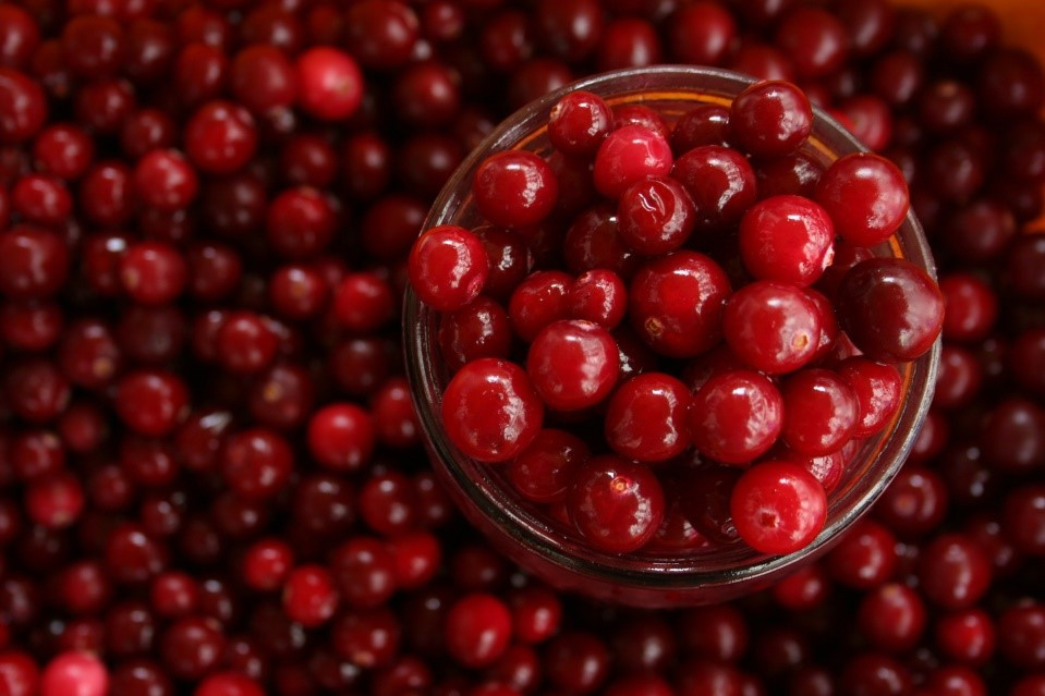Kidney Cancer Cause treatment solution reason cranberries