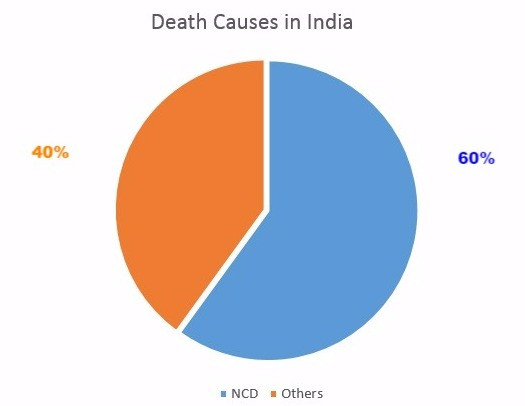 NCD Death Causes in India