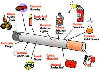 Tobacco elements