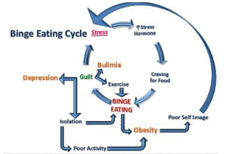 Eating Disorder Types Effect Treatment Binge Eating Cycle