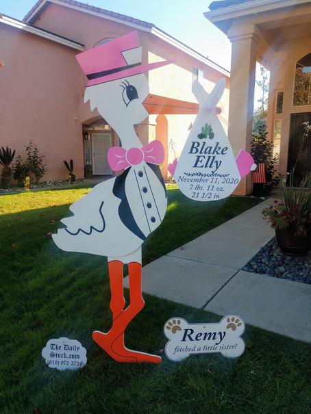 The Daily Stork ~ 619-972-3724 ~ Escondido, California ~ Girl Stork Yard Sign ~ Dog Bone Sign