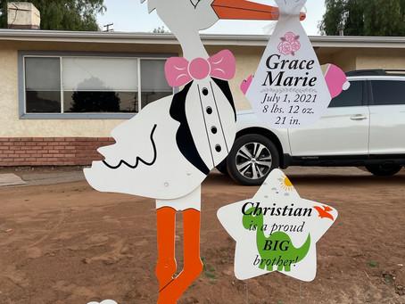The Daily Stork ~ 619-972-3724 ~ Lakeside, Ca ~ Boy Stork Yard Sign ~ Sibling Sign