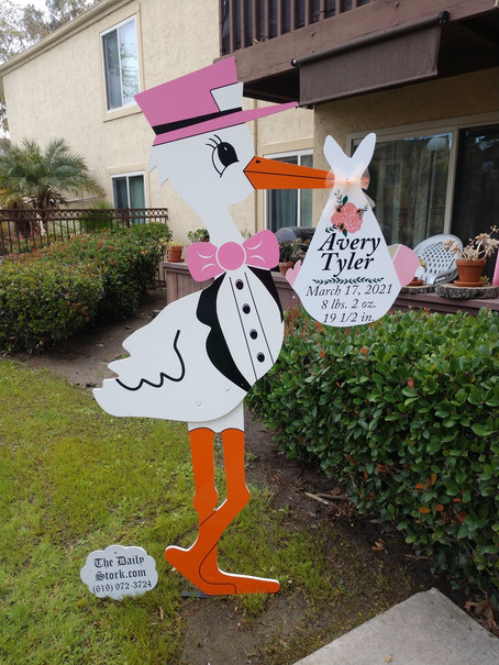 The Daily Stork ~ 619-972-3724 ~ San Diego Boy Stork Yard Sign