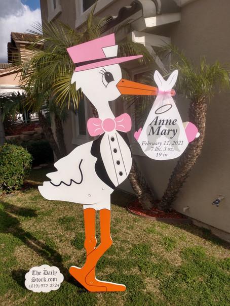The Daily Stork ~ 619-972-3724 ~ Spring Valley , Ca ~ Girl Stork Yard Sign Rental