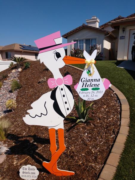 The Daily Stork ~ 619-972-3724 ~ Santee, California ~ Girl Stork Yard Sign Rental