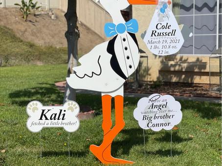 The Daily Stork ~ 619-972-3724 ~ Jamul, California ~ Stork Yard Sign ~ Dog Bone Sign