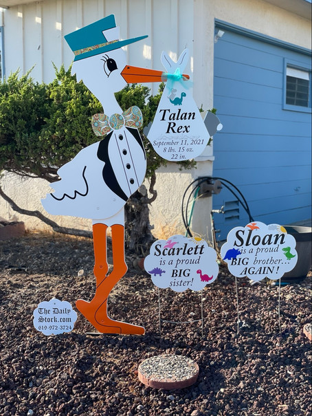 The Daily Stork ~ 619-972-3724 ~ Mission Gorge, California ~ Stork Yard Sign ~  Sibling Sign