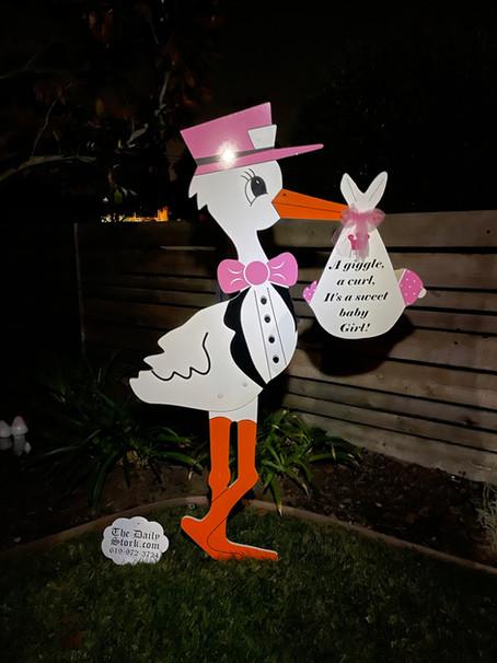 The Daily Stork ~ 619-972-3724 ~ Vista, California ~ Baby Shower Stork Yard Sign
