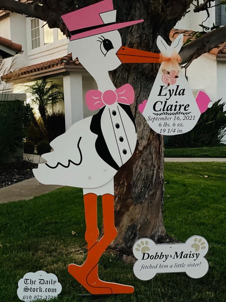 The Daily Stork ~ 619-972-3724 ~ Vista, California ~ Girl Stork Yard Sign ~ Dog Bone Sign