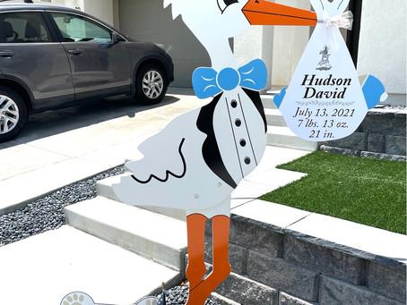 The Daily Stork ~ 619-972-3724 ~ Santee Boy Stork Yard Sign Rental ~ Dog Bone Sign