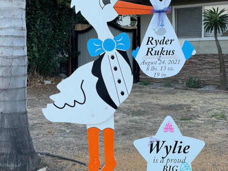 The Daily Stork ~ 619-972-3724 ~ Vista , Ca ~ Boy Stork Yard Sign Rental ~ Siblings Sign