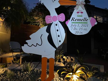 The Daily Stork ~ 619-972-3724 ~ Ocean Beach, California ~ Girl Stork Yard Sign Rental