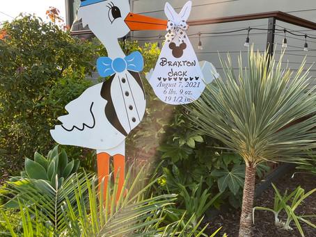 The Daily Stork ~ 619-972-3724 ~ Sunset Cliffs Boy Stork Yard Sign Rental