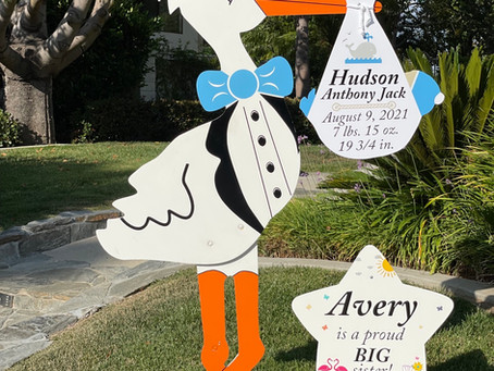The Daily Stork ~ 619-972-3724 ~ Carmel Valley, Ca ~ Stork Yard Sign Rental ~ Siblings Sign