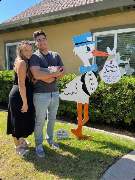 The Daily Stork ~ 619-972-3724 ~ Mira Mesa, Ca ~ Boy Stork Yard Sign