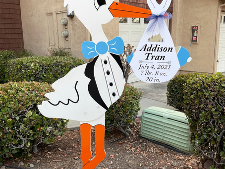 The Daily Stork ~ 619-972-3724 ~ San Diego Stork Yard Sign Rental