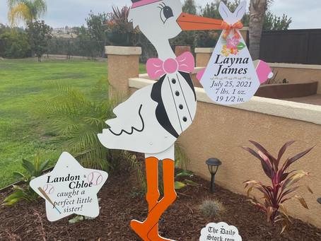 The Daily Stork ~ 619-972-3724 ~ Chula Vista, California ~ Girl Stork Yard Sign ~ Sibling Sign
