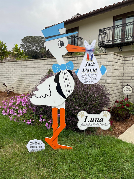 The Daily Stork ~ 619-972-3724 ~ Pacific Beach, California ~ Stork Yard W~ Dog Bone