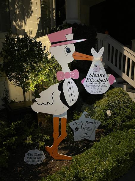 The Daily Stork ~ 619-972-3724 ~ San Marcos Girl Stork Yard Sign ~ Sibling Star Sign