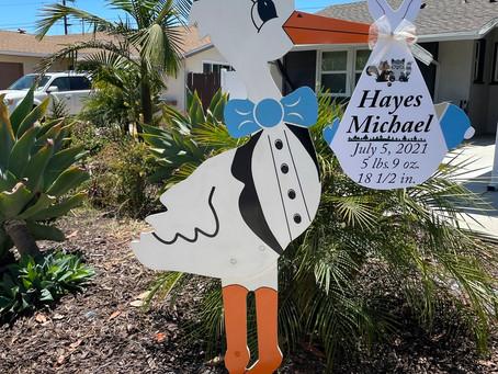 The Daily Stork ~ 619-972-3724 ~ San Diego Boy Stork Yard Sign Rental
