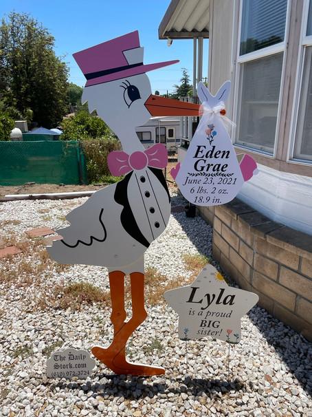 The Daily Stork ~ 619-972-3724 ~ El Cajon, California ~ Girl Stork Yard Sign Rental ~ Siblings Sign