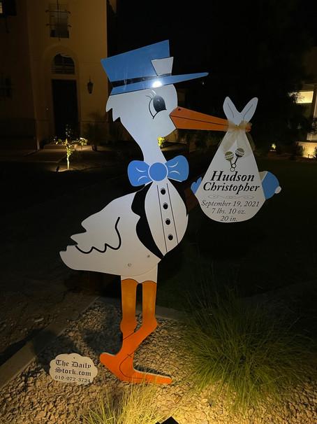 The Daily Stork ~ 619-971-3724 ~ Encinitas, Ca ~ Boy Stork Yard Sign