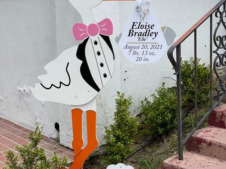 The Daily Stork ~ 619-972-3724 ~ La Jolla, California ~ Girl Stork Yard Sign