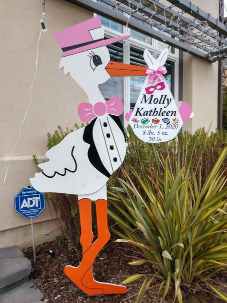 The Daily Stork ~ 619-972-2734 ~ San Diego, Ca ~ Girl Stork Yard Sign