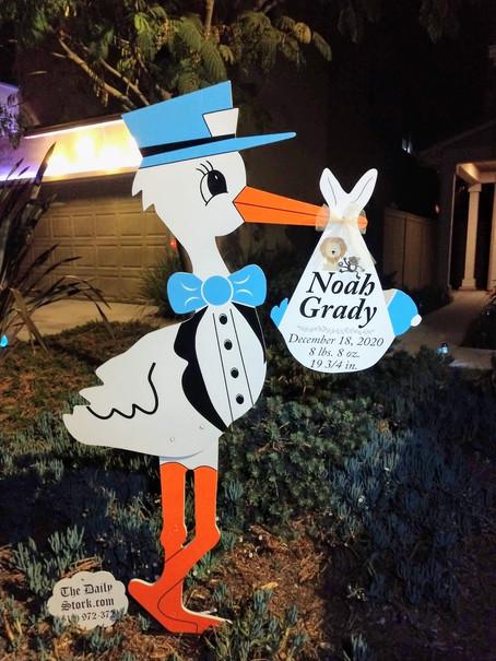 The Daily Stork ~ 619-972-3724 ~ Vista, California ~ Boy Stork Yard Sign