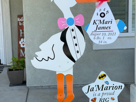 The Daily Stork ~ 619-972-3724 ~ Harbison Cayon, Ca ~ Boy Stork Yard Sign ~ Sibling Sign