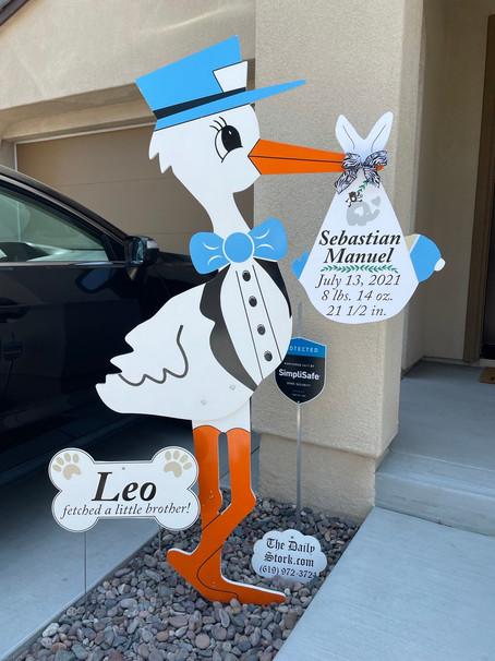 The Daily Stork ~ 619-972-3724 ~ Santee, California ~ Stork Yard Sign Rental ~ Dog Bone