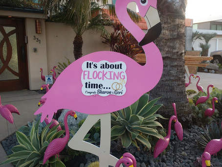 The Daily Stork ~ 619-972-3724 ~ La Jolla , California ~ Wedding Flamingo
