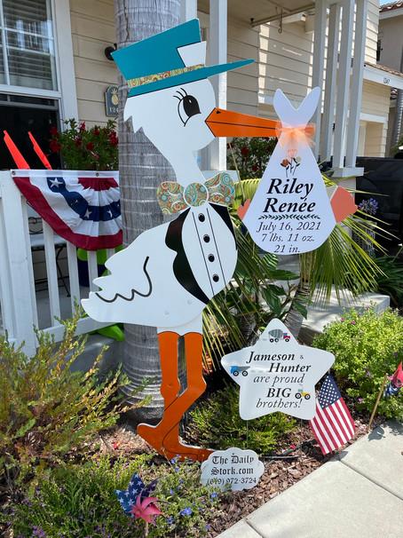The Daily Stork ~ 619-972-3724 ~ Encinitas, Ca ~ Girl Stork Yard Sign Rental ~ Siblings Sign