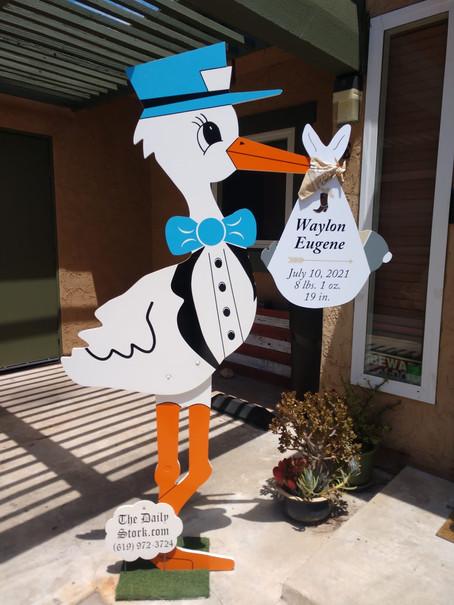 The Daily Stork ~619-972-3724 ~ San Diego Boy Stork Yard Sign